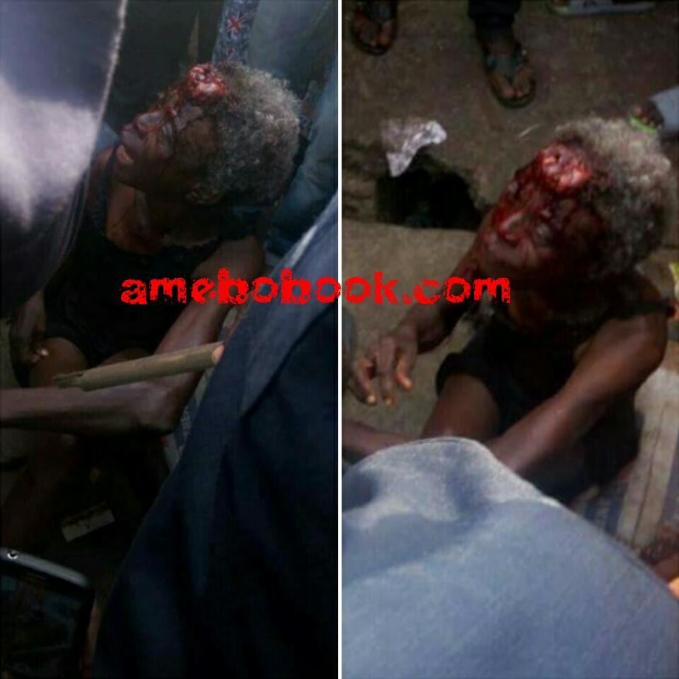 Cat Reportedly Turned Into An Old Woman After Being Stoned At Coker, Aguda, Surulere In Lagos