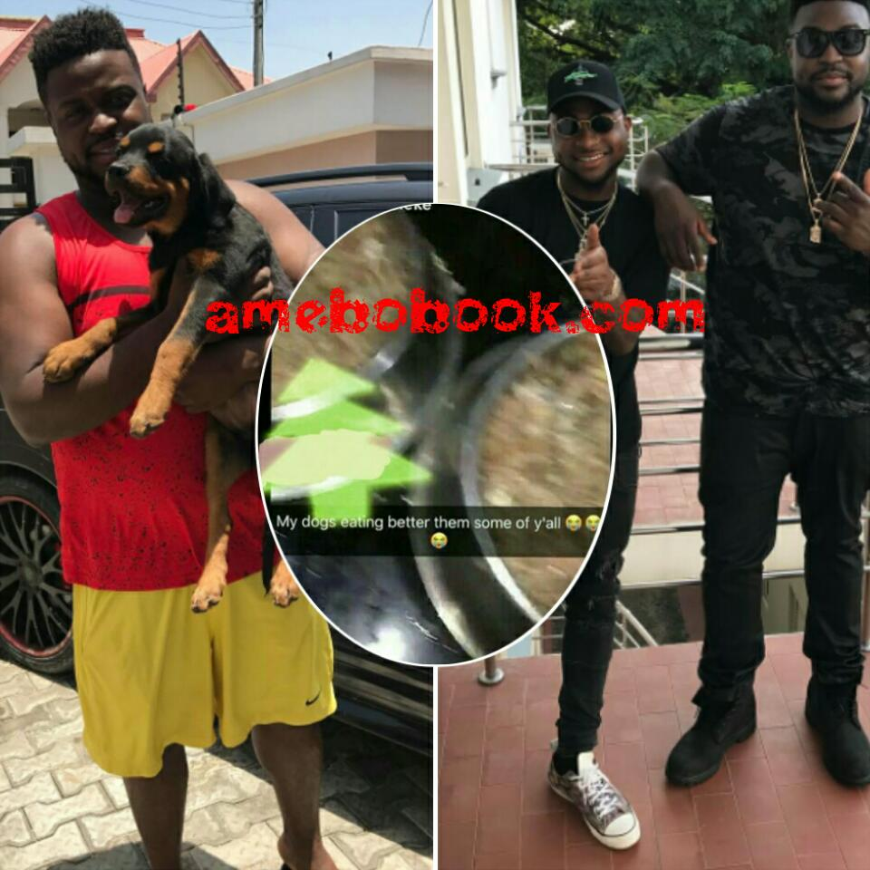 Davido's Brother Adewale Adeleke Has Spoken Like An Idiot By Telling His Fans MY DOGS EATING BETTER THEM SOME OF Y'ALL