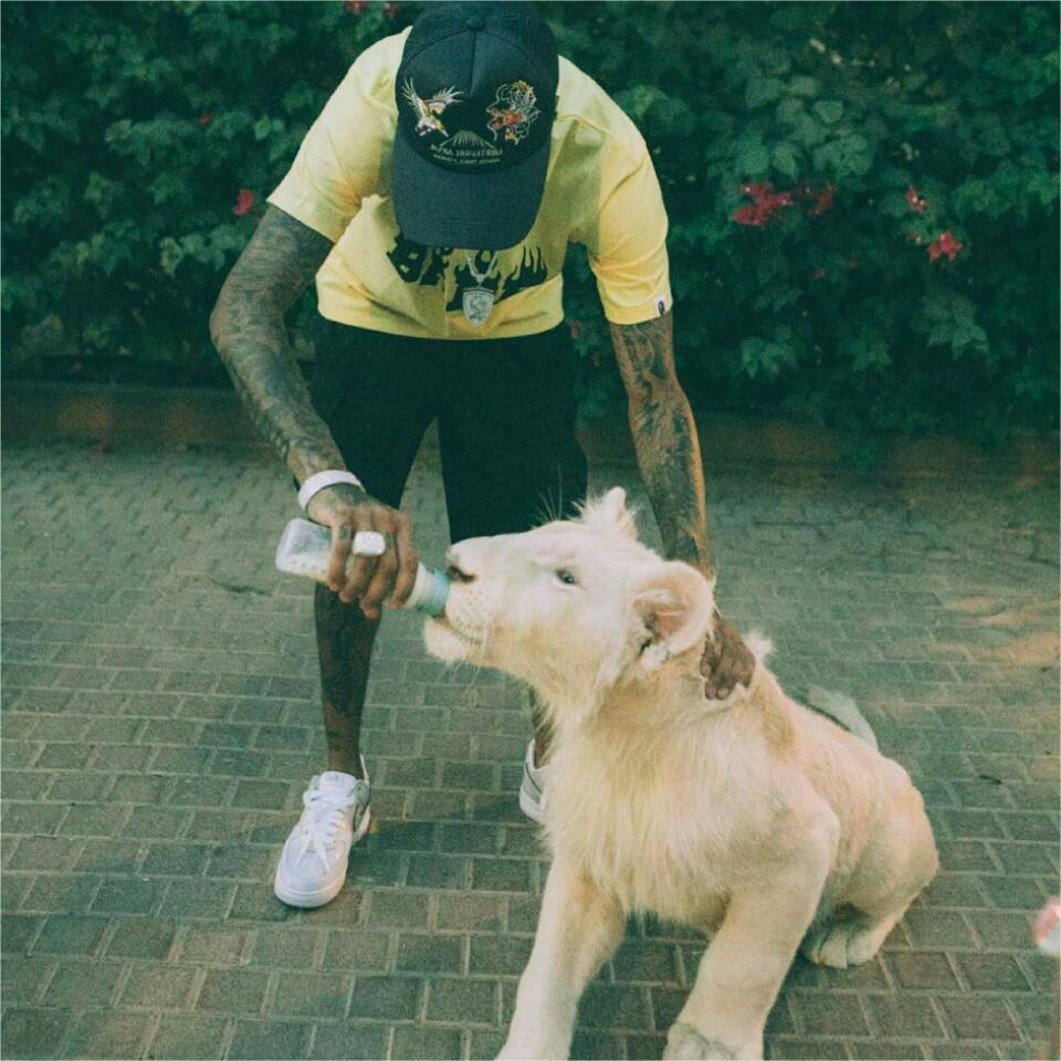 Tyga Is Pictured Bottle-feeding Lion Cub In Dubai