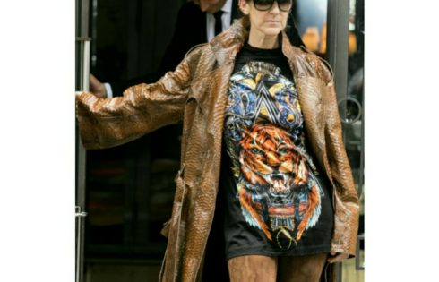 Celine Dion Rocked Thigh-High Boots And No Pants In Paris
