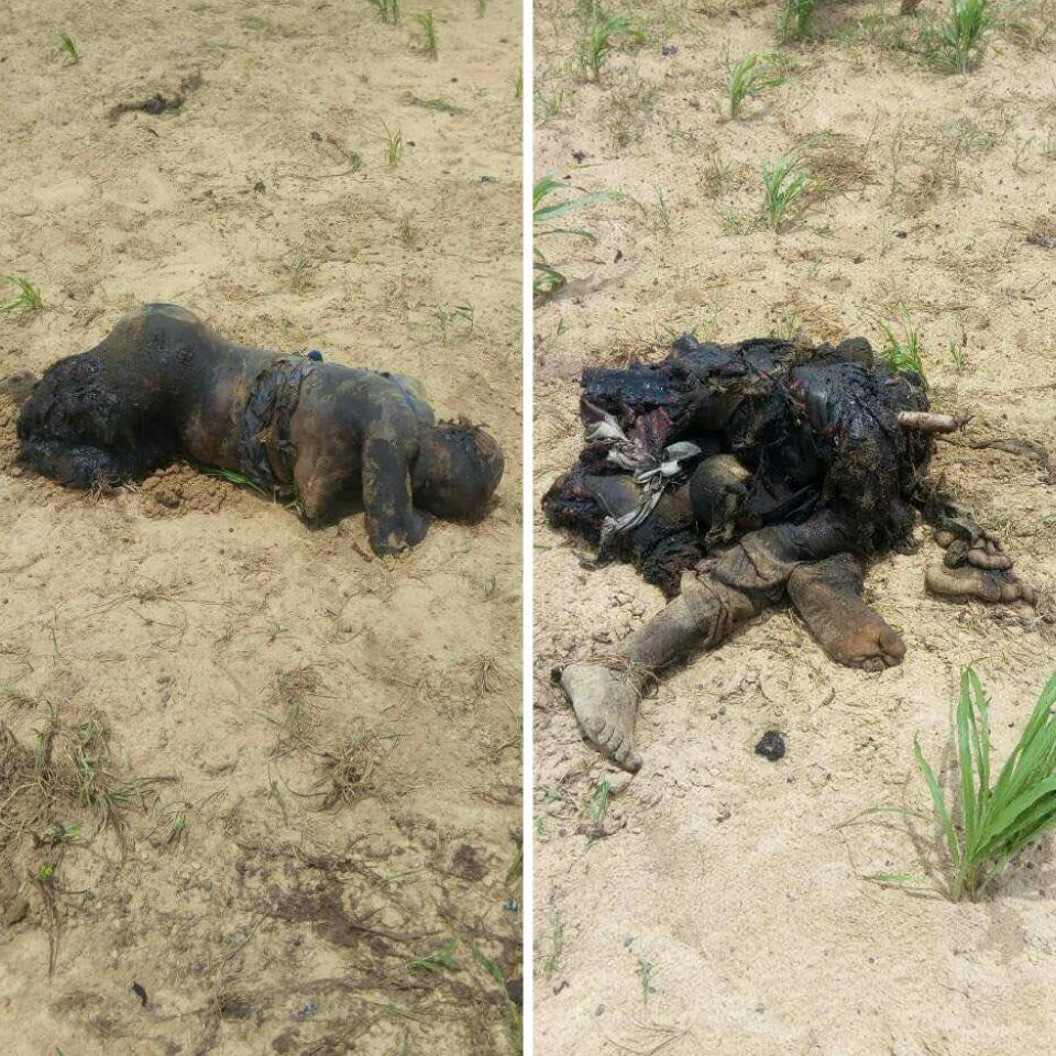 5 Suicide Bombers Who Died Along Mamanti Village In Borno