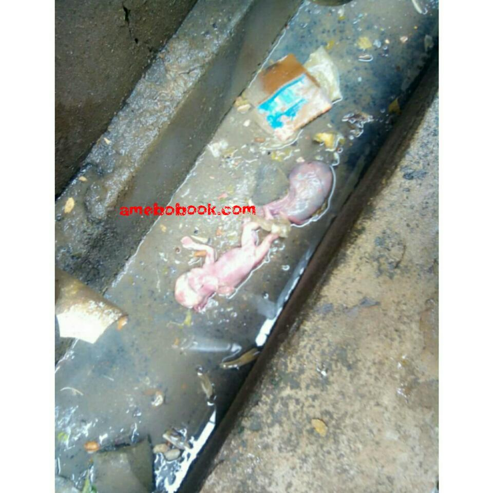 Aborted Baby Flushed Down A Female Hostel In Enugu State