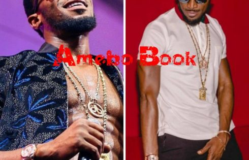 D'banj Slammed A Troll Who Told Him To Quit Music