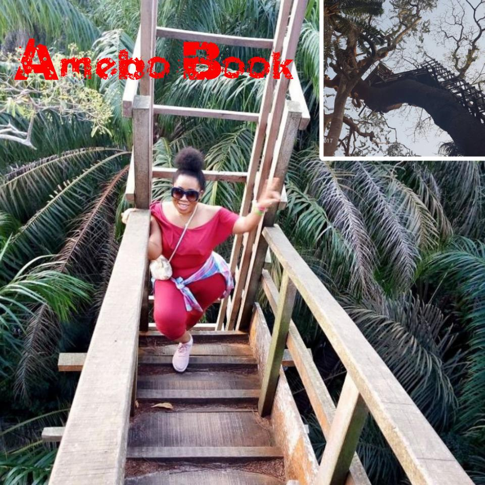 Moyo Lawal Discloses How She Climbed A Tree House And Nearly Slipped Twice