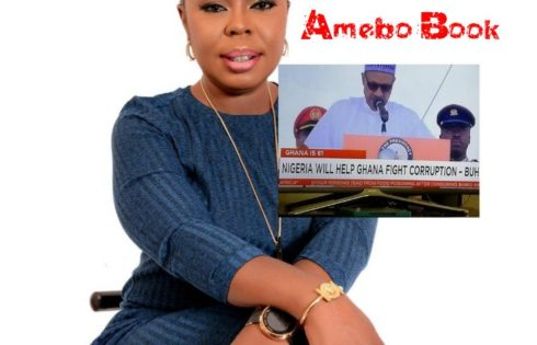 Afia Schwarzenegger Calls Out President Buhari For Saying Nigeria Will Help Ghana Fight Corruption