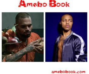 """Chris Brown Responded To Bow Wow's """"Drunk Off Ciroc"""" Subliminals"""