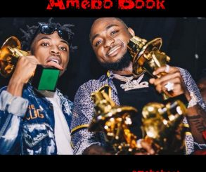 Mayorkun Dedicates His Headies Next Rated Award To Davido