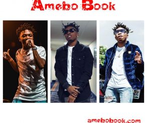 Mayorkun Rubbishes Value Of His Passport