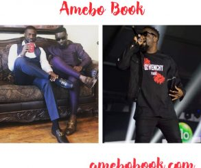 I Was Not Wrong In Promoting Mr P's Song Sarkodie