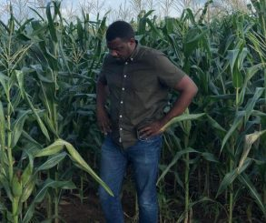 John Dumelo 156 Acres Of Corn And 20 Acres Of Beans Farm