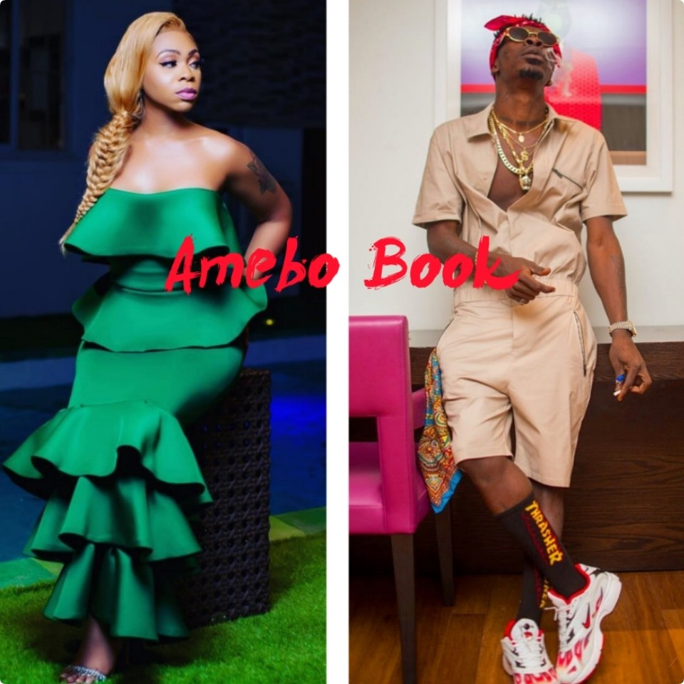 Shatta Wale Proposes Marriage To Michy