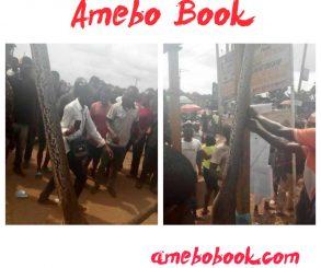 Man Kills Python That Swallowed His Dog In Anambra