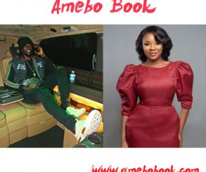 Serwaa Amihere Accused Of Exchanging Numbers With Emmanuel Adebayor