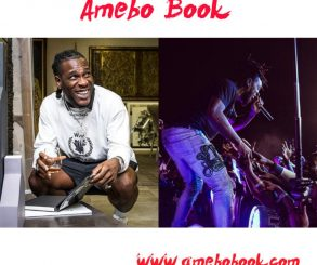 Burna Boy Slams Coachella For Writing His Name With Small Font