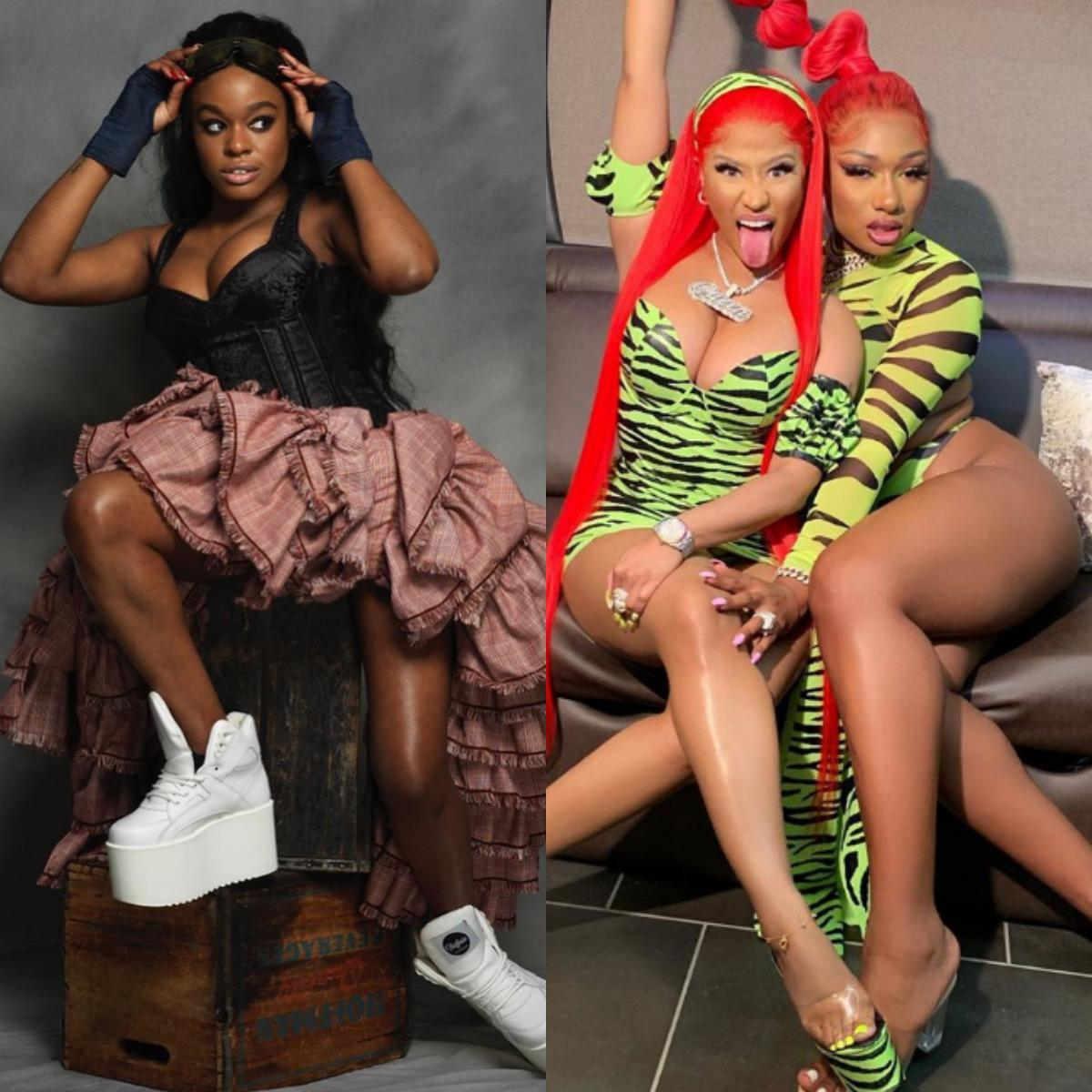 Nicki Minaj Evil Fake Towards Megan Thee Stallion