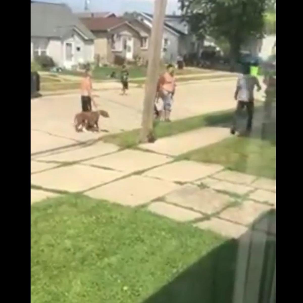 Black Man Defends Himself Against Group Of White Men And Their Dog