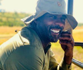 Idris Elba Reacted To Davido's Album Cover