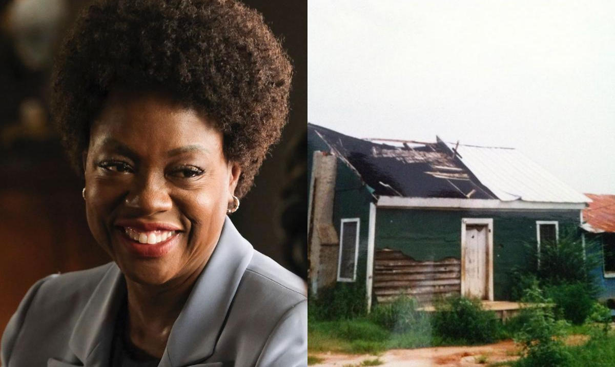 Viola Davis South Carolina Home She Was Born - Amebo Book